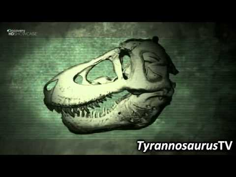 0 Date Night for Tyrannosaurus Rex: A Theory