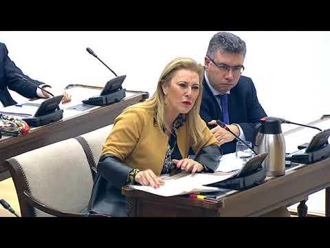 Carolina España en la Comisión de Hacienda del Congreso