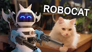 Video ROBOCAT - PAROLE DE CHAT MP3, 3GP, MP4, WEBM, AVI, FLV Mei 2018