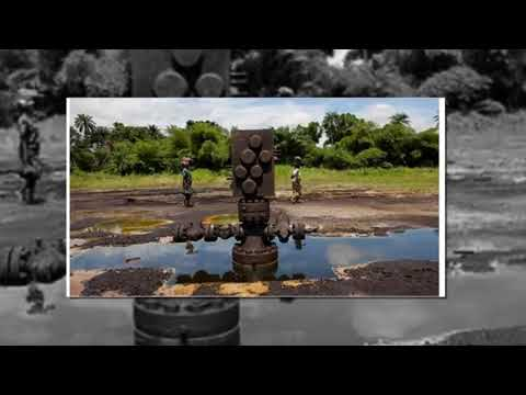 7 wells in Niger state 'confirm' existence of crude oil