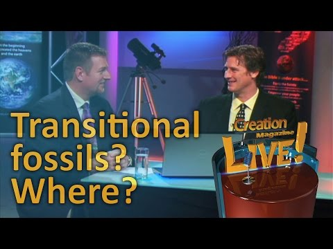 Transitional fossils? Where?  — Creation Magazine LIVE! (2-22)