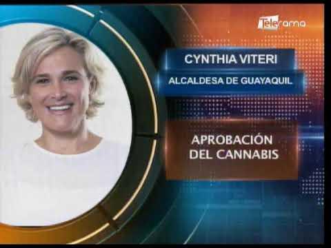 Viteri en contra de la aprobación del cannabis para uso medicinal