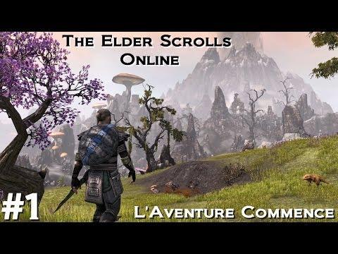 The Elder Scrolls Online Episode 1 FR – Découverte Gameplay : L'aventure commence !