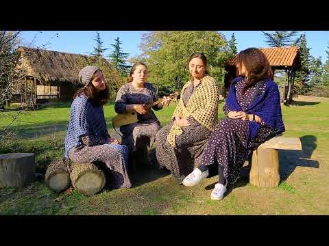 არაჩვეულებრივი ქართული სიმღერა (ვიდეო)