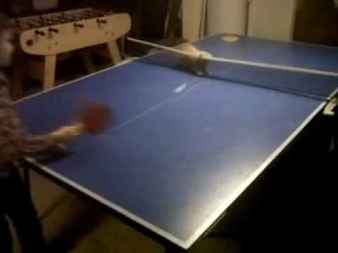 Boy Plays Ping-Pong with His Kitten – Video