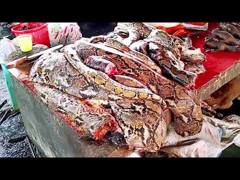 Very strange Meat market of China! See it to believe it