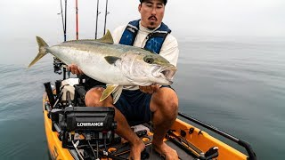 Landing A Big Yellowtail On A Kayak  Kevin Nakada Shows You How