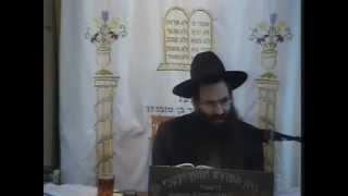 """פרשת לך לך – הרב עובדיה יוסף (נכד מרן) (ה'תשע""""ג)"""