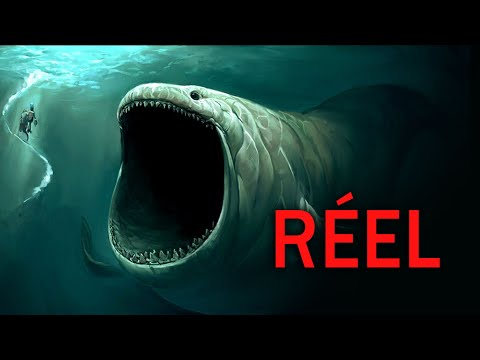 Si tu as peur des océans, ÉCOUTES ce BRUIT !