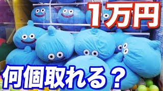 Video HOW MANY SLIME CUSHIONS WILL WE GET!? WE SPENT ¥10,000 AT ARCADES. MP3, 3GP, MP4, WEBM, AVI, FLV Juli 2018