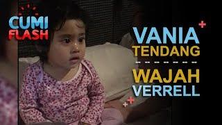 Video Gara-gara Ini, Vania Tendang Wajah Verrell - CumiFlash 20 Oktober 2017 MP3, 3GP, MP4, WEBM, AVI, FLV Oktober 2017