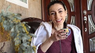 Աշխատանքային Օր - Heghineh Armenian Family Vlog 279 - Հեղինե - Mayrik by Heghineh