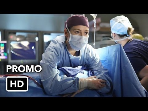 Grey's Anatomy 11.15 (Preview)