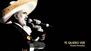 Video Vicente Fernandez - Te Quiero Ver MP3, 3GP, MP4, WEBM, AVI, FLV Agustus 2018