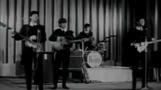 Love Me Do The Beatles