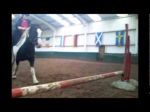 Video my horse khai's new movie xxx download in MP3, 3GP, MP4, WEBM, AVI, FLV January 2017