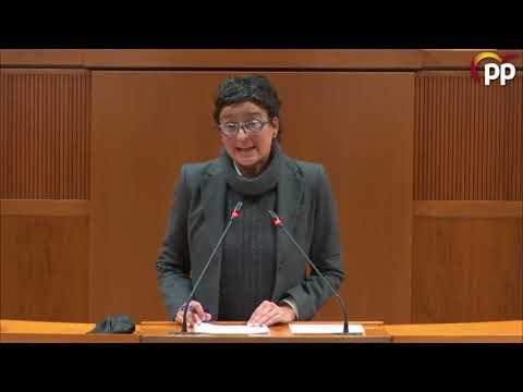 Marín acusa al Gobierno de incumplir el plan autonómico de salud mental