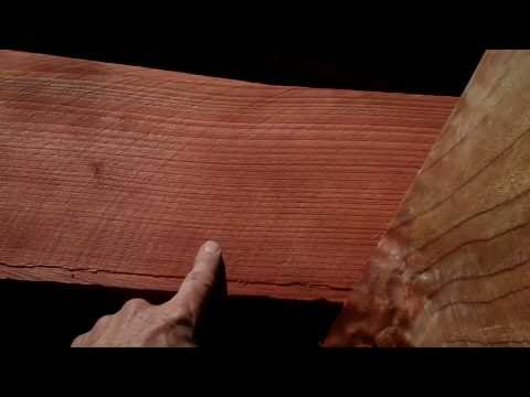 (114) The difference between redwoods