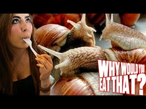 snails - In this episode of Why Would You Eat That? Michael and Chris jet set to France, whose cuisine includes delicacies like horse meat, calves' brains and snails....