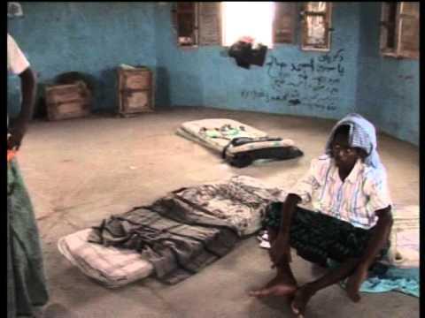 تقارير في أرض الصومال