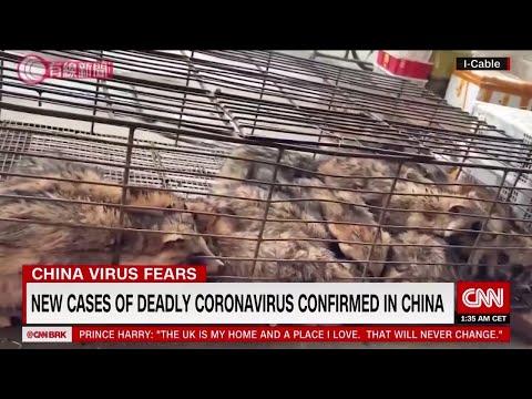 """Wuhan SARS"": Tracing the origin of the new virus to China's wild animal markets"