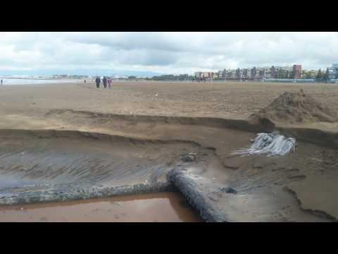 كارثة بيئية تهدد شاطئ المحمدية