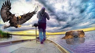 Video What's the CRAZIEST Thing You've Ever Hooked While Fishing??? | Matt's Story MP3, 3GP, MP4, WEBM, AVI, FLV Desember 2018