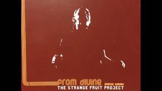 The Strange Fruit Project -  Maintain [Liquid Soul Mix]
