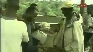 Ethiopia Today, Ethiopia's Gift To The World. AllComTV.com Live ETV -- Part 2