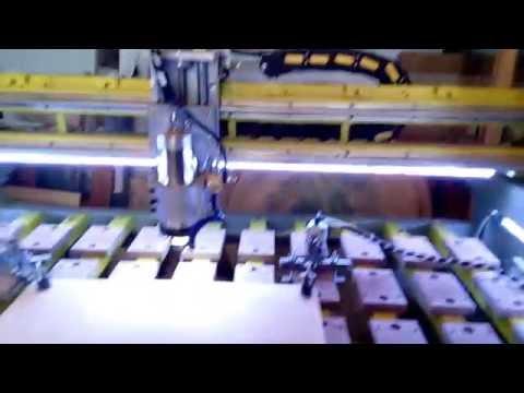 Taglio sagoma circolare betulla a 5 mt/min Raptor 5 autocostruita