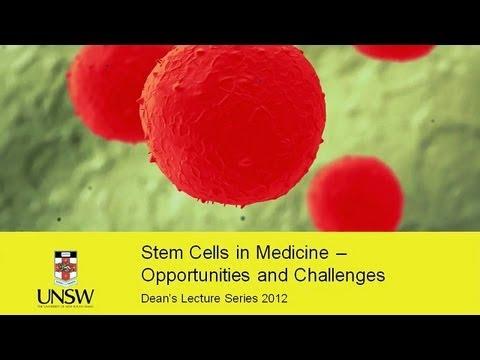 UNSW Medizin Dean  's Lecture Series 2012 - Stammzellen in der Medizin: Chancen und Herausforderungen