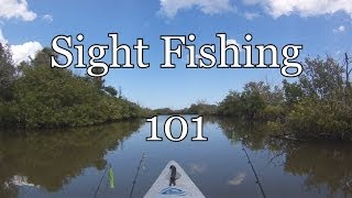 Video Sight Fishing 101 Lesson MP3, 3GP, MP4, WEBM, AVI, FLV Agustus 2018