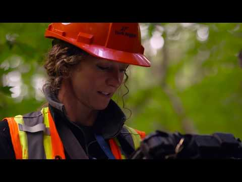York Region - Do What You Love - Forestry