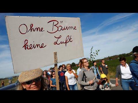 Hambacher Forst: Tausende protestieren auf Demonstration gegen Abholzung