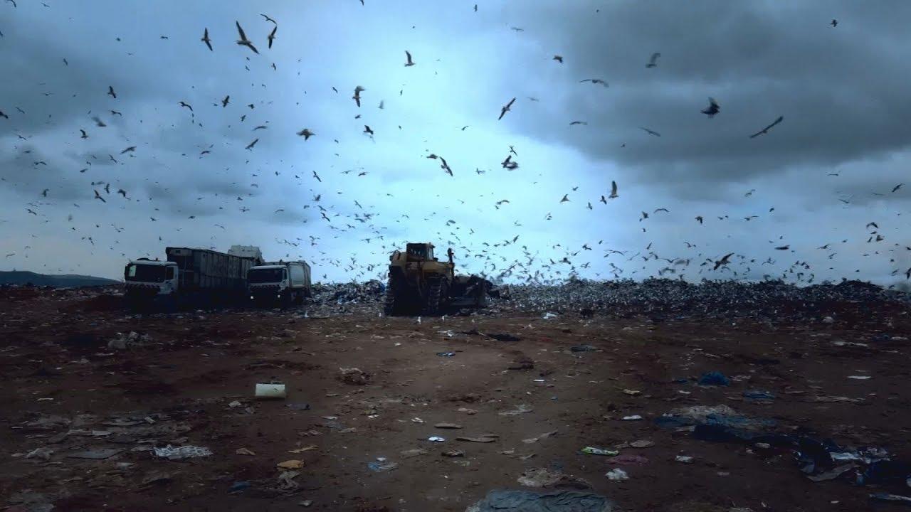 Ο γρίφος των σκουπιδιών