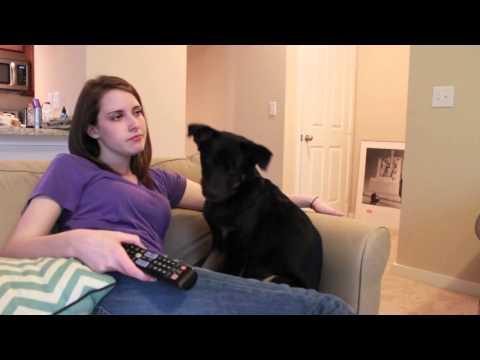 女主人向狗狗吹氣,沒想到狗狗居然怒了!!