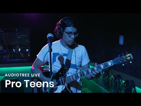 Pro Teens - Friendship Theme | Audiotree Live