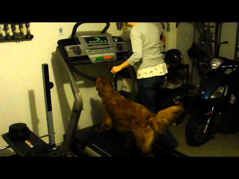Davis & Mom on the Treadmill