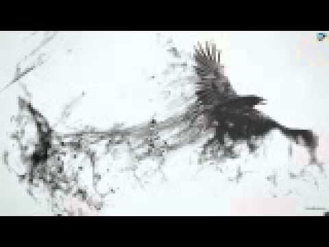 edijs benoit - dris (видео)