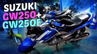 9. 2015 Suzuki GW250 and GW250F Overview and Info