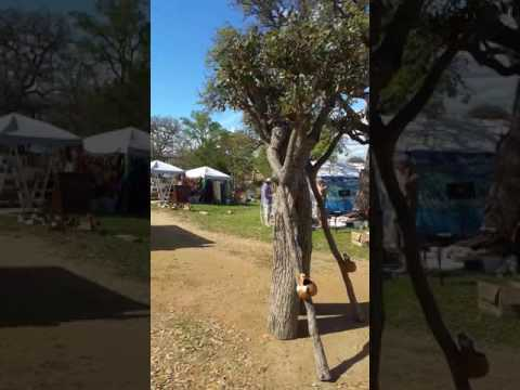 A Walking Tree at Llano Earth Art Festival