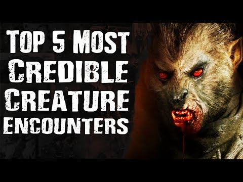 Top 5 Most CREDIBLE CREATURE ENCOUNTERS