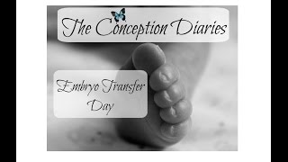 The Conception Diaries 33  Embryo Transfer Day