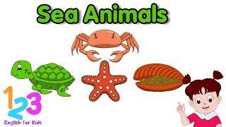 Belajar Bahasa Inggris Mengenal Hewan Laut Diva 1 | 123 English For Kids | Kartun Anak Channel