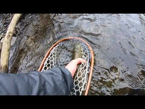 fly fishing the pocono mountains of pennsylvania and upper delaware river for wild trout