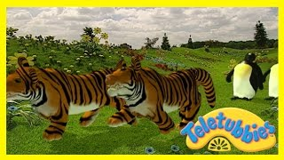Teletubbies: Cat's Night Out - HD Video - YouTube