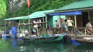 Du Lịch Vịnh Hạ Long, Quang Ninh, Vietnam - Viet Care Travel