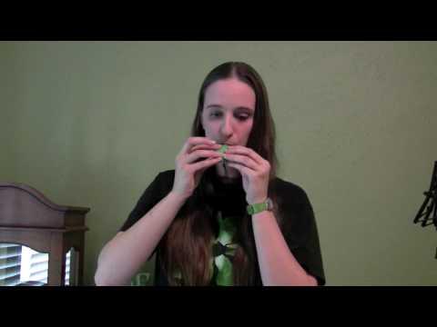 Morfa'r Frenhines on STL Soprano Pendant (видео)