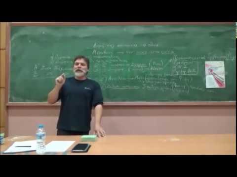 Video - Αυτός ο Έλληνας πανεπιστημιακός έκανε όσα περισσότερα λάθη μπορούσε μέσα σε λίγα λεπτά