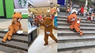 """Download Video Kumpulan video tik tok terlucu indonesia 2018 """"Beruang itu lucu"""" MP3 3GP MP4"""